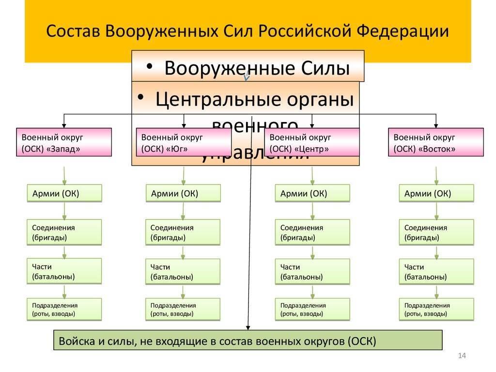 Виды войск специального назначения и условия отбора