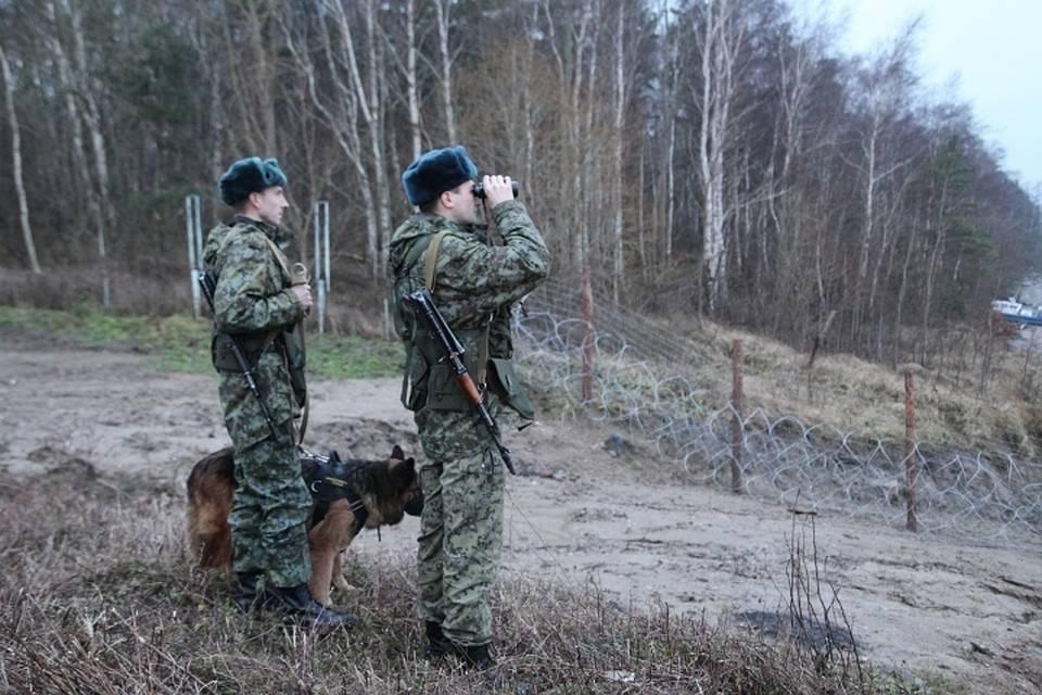 Как попасть на службу в пограничные войска ФСБ России